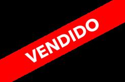 VENDIDO-667x500